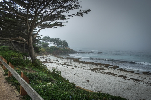 Post image for Carmel-by-the-Sea