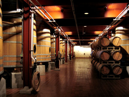 Mondavi cellar