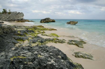 Bermuda 3