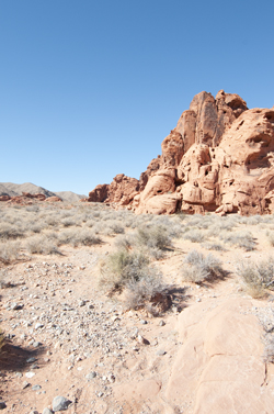 rc20091025_valley_of_fire_006
