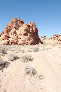 rc20091025_valley_of_fire_007