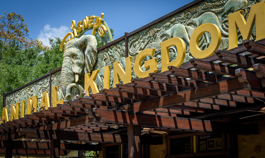 20160429_animal_kingdom_024